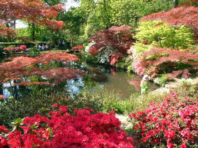 – творението на банкера градинар