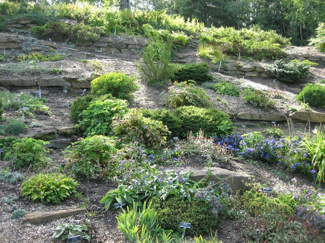 The Charm Of The Alpine Garden  New Ideas For Your Landscaping Garden Home Design Ideas